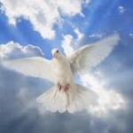 Rodman Williams: The Gift of the Holy Spirit Today: Dimensions