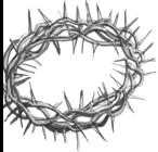 Crown of Thorns, by Stan Myers