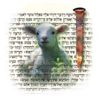 Messianic Pictures in the Temple Sacrificial System