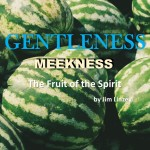 The Fruit of the Spirit: Gentleness